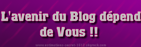 SONDAGE SPECIALE : QUE DOIT FAIRE LE BLOG ??