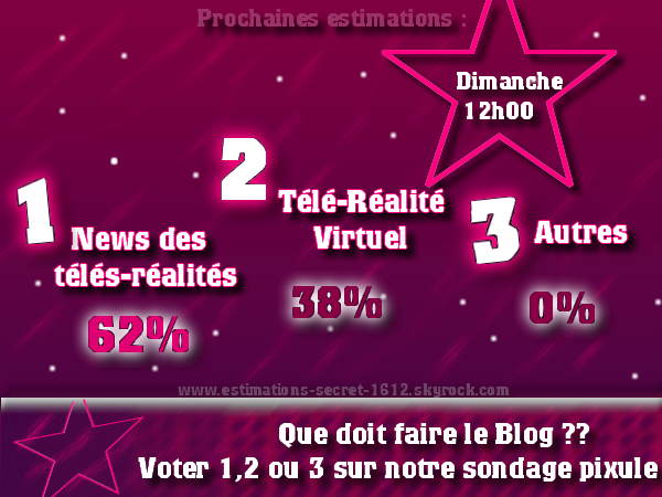 ESTIMATIONS DE NOTRE SONDAGE SPECIALE : QUE DOIT FAIRE NOTRE BLOG ??